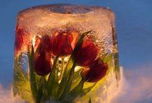 Ice lanterns / Jäälyhdyt