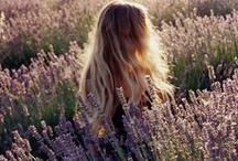 follow the sun / Let us dance in the sun, wearing wild flowers in our hair