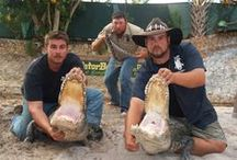 "Gator Boys Alligator Rescue / They handle voracious alligators with the grace and expertise that only a true Gator Boy can...see the Gator Boys live in the ""Gator Pit"" at Everglades Holiday Park..."