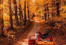 autumn//winter. / cuddle seasons & everything's cozy