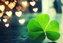 St. Patrick's Day / San Patricio
