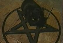 FELINE FAMILIARS / by White Magick Alchemy