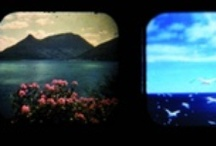 CView Company / Viewmaster images