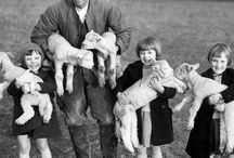 British rural life / The history of the land and the people who worked it.