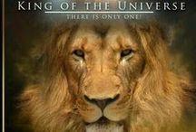 My Beloved King of Glory