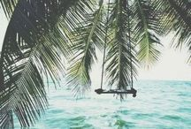 Travel | Hawaii / Hawaii: Land of sunshine, ocean and palm trees.