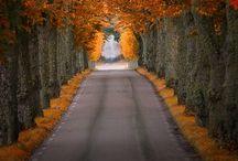 Street, Road, Path