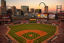 St. Louis Cardinals / by Earleen Stockwell