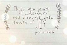 Beautiful yet true