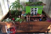 Seahawks 2014 / Themed garden I made for two friends who are Seattle Seahawks fans.  April 2014 / by Raindrops and Roses