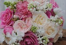 Roses.roses & roses