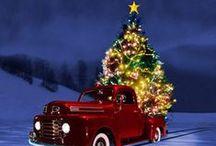 """O Christmas Tree"" <3 / .Christmas Trees / by Pamela R. Graves"