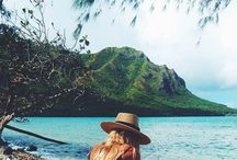 . the island life