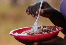 Food / An insight into the food served in Kenya.