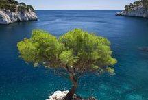 Paysages de Provence / En Provence, Dame Nature nous a gâté. Entre mer et montagne, la nature provençale offre une diversité exceptionnelle de paysages de toute beauté.