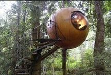 TREE HOUSES / Tree houses aren't just for little kids these days, and there are plenty of designs to prove it.