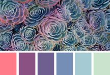 Colour reference