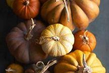 Autumn Inspiration / Inspiration for autumn.