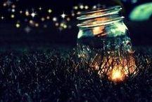 Bioluminescense / Life Lights