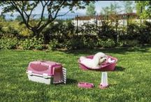 PET LINE TRENDY COLOURS / Prodotti per animali