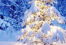 'Tis the season / All things christmas