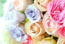 Blooming beautiful / All things flowers