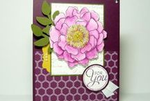 Blended Bloom Stampin up