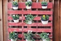 Gardening DIY