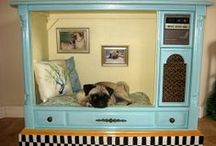 Pets Are People, Too! / Interior Designs With Pets in Mind