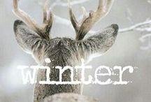 Tempo d'inverno! / Lo senti quel profumo pungente di freddo,il grigio negli occhi e quei lunghi tramonti? E' l'inverno che arriva...