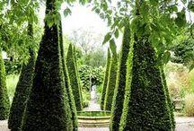 Garden Inspiration / by Heartland Nursery and Garden Center