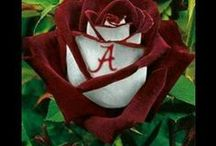 ROLL TIDE!  / National Champions Babyy!!