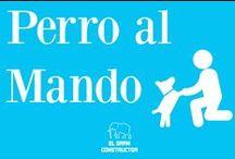 Perro Al Mando / ANIMALES EN CASA/ por El Gran Constructor