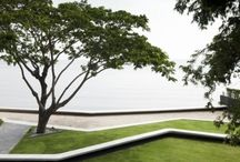 Landscape + Green