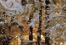 Love winter / by Deena