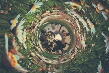 Trips are meant to be adventurous. / Psychedelics anything. What peaks the eye. / by Mercuri Flores