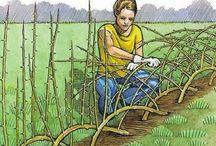"Gardening - ""how to"""