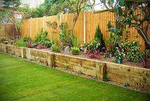 Gardening - ideas for new garden