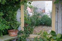 Gardening - garden mirrors