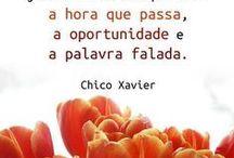 citações / by Veronica Santos