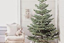 Christmas / All Christmas