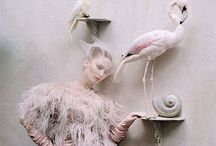 Jennifer Lawrence Model / Model#actress#fashion