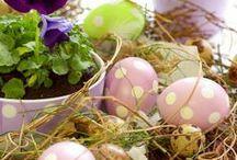Lente / Pasen, kleuren & bloemen.