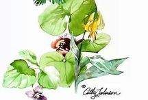 Art by Cathy Johnson / Amazing nature artist with lots of tutorials