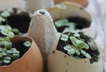 DIY ♥ / Filzen, Nähen, Stricken, Sticken, Bauen, Basteln, Selbermachen, DIY, Holz, Wolle, Tricks, Garten, Kinder