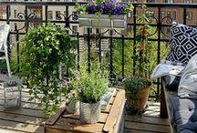 Terrace / Terrasse / #terrasse #terrace #deco #outdoor