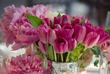 fleurs oui! oui!