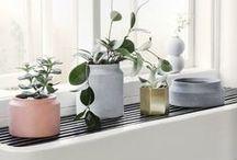 Decorations / Home decoration ideas