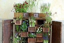 Tuinieren / Gardening