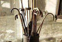acordeon- cane / hudba a vychádzka palica